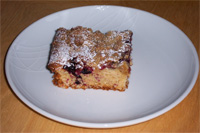 Blackcurrant Slices 1